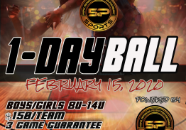 5P Sports : 1 Day Ball